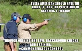 Common Sense Meme - common sense gun control meme on imgur