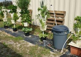 hydroponic vegetable garden design home outdoor decoration