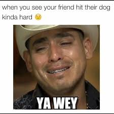 Funny Memes About Mexicans - funny for mexican half funny www funnyton com