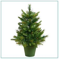 small pine trees 1 mini decoration for home 3 size tree a small pine