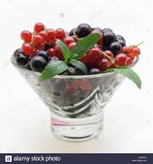 Black And Red Vase Black Currants In Glass Bowl Stock Photos U0026 Black Currants In