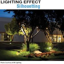 axite lighting botticelli 12 volt landscape light black flush cap