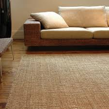 Living Room Area Rugs Jute Area Rugs Set U2014 Steveb Interior How To Clean Jute Area Rugs
