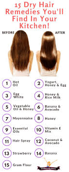 sollutions to dry limp hair best 25 dry hair products ideas on pinterest damaged hair