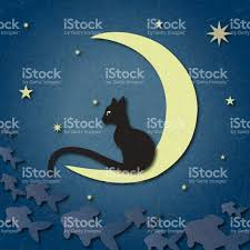 black cat sits on moon and catches fish among starry sky stock