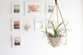 Modern Hanging Planter by The Planter Hanging Brass Air Plant Holder With Cup Modern