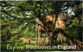 treehouse holidays in the uk portugal italy canopy