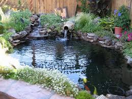 Backyard Fish Pond Ideas Triyae Com U003d Backyard Koi Pond Designs Various Design