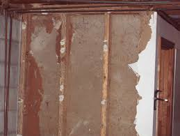 structural repair termite damage perfection plus remodeling
