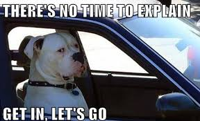 No Time To Explain Meme - theres no time to explain get in the car meme no best of the funny meme