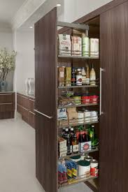 Modern Kitchen Pantry Designs by 22 Best Kitchen Organization Images On Pinterest Kitchen