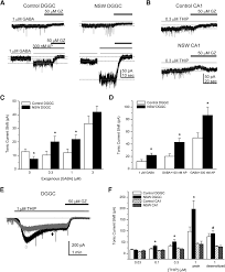 perimenstrual like hormonal regulation of extrasynaptic δ