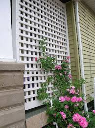 White Pvc Trellis Climbing Roses On This Lattice At End Of Porch Behind Swing