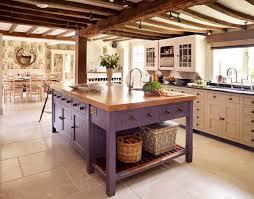 purple kitchens kitchen ideas kitchen storage ideas purple kitchen cabinets
