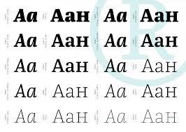 schrift design franziska schrift hybrid vorlage klassisistisch dynamisch