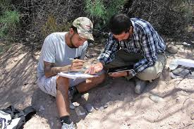 native plant society of new mexico indigenous knowledge helps untangle mystery of mesa verde