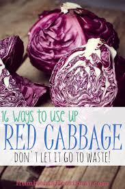 leftover ingredients red cabbage humble in a heartbeat