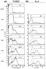 regulation and function of t1 st2 expression on cd4 t cells