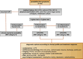 contemporary management of chronic prostatitis chronic pelvic pain