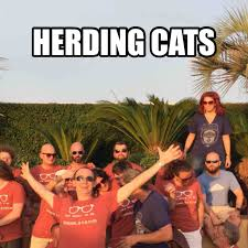 Herding Cats Meme - what do cats and websites have in common schoolstatus