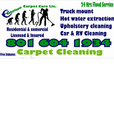 evolution carpet care carpet cleaning 70 buren ave ballpark