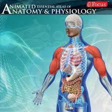 Google Human Anatomy Anatomy U0026 Physiology Animated Android Apps On Google Play