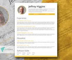 Stylish Resume Templates Word 13 Free Resume Templates For Microsoft Word Freebiesland
