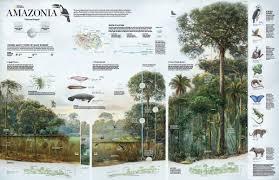Amazon Maps Stamen Design Bringing The Best Of National Geographic U0027s Classic