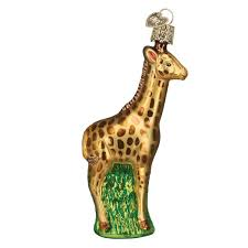 amazon com old world christmas baby giraffe glass blown ornament