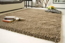 Thick Pile Rug Soft Thick Shaggy Rug Funny Xxl Beige Non Shedding High Pile