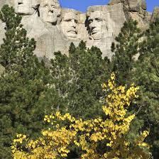 South Dakota travel distance images Horseback riding near black hills south dakota usa today jpg