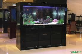 goedkope aquarium accessoires imagitarium freshwater aquarium petco