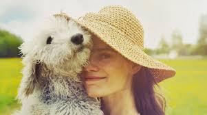 australian shepherd quiz quiz how good of a dog parent are you u2013 iheartdogs com