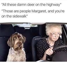 Florida Rain Meme - florida memes home facebook
