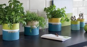 plante cuisine decoration des pots à plantes aromatiques originaux pour ma cuisine prima