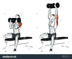 decline bench press muscles dumbbell bench zivile info