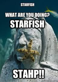 Starfish Meme - starfish meme 28 images starfish imgflip eats ice cream family