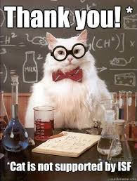 Thank You Very Much Meme - thank you cat is not cat meme cat planet cat planet