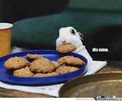 Mine Meme - mine by paranoid rabbit meme center