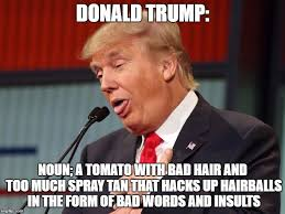 Meme Defintion - donald trump definition imgflip