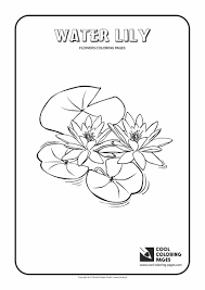 water lily coloring page cool coloring pages