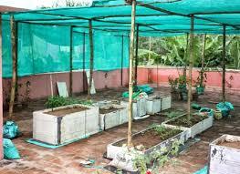 chic vegetable garden shade cloth vegetable garden shade cloth