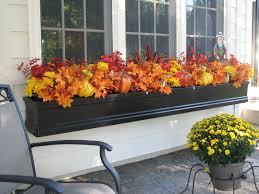 Plants For Winter Window Boxes - the u0027i love my summer window box u0027 contest