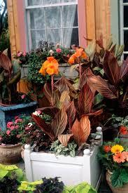 Ideas For Container Gardens 5 Simple Garden Container Ideas Your Easy Garden