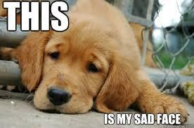 Sad Face Meme - this is my sad face sad face quickmeme
