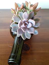 Wine Bottle Planters by Glass Succulent Planter Wine Bottle Planter Garden Wine