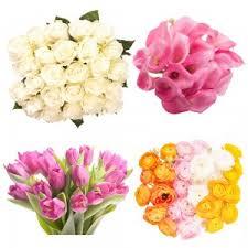 e flowers send flowers flower bouquets wholesale flowers flower muse