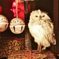 owl christmas owl christmas decorations letter of recommendation