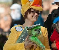 Big Bird Halloween Costumes 6 Halloween Costumes Wear Pet