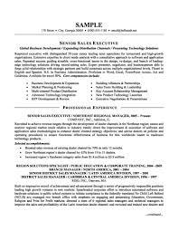 senior executive resume sales executive resume sles resume senior sales executive best